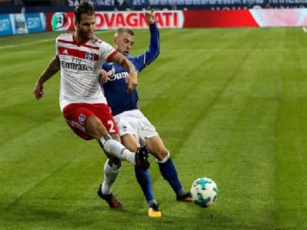 Dự đoán Hamburger vs Schalke 04, 1h30 ngày 24/7